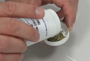Uso terapeutico della cannabis nel dolore cronico:  efficacia ed effetti avversi